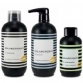 ESLABONDEXX  Salon KIT 500ml